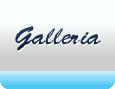 Gallery - Tina Maze